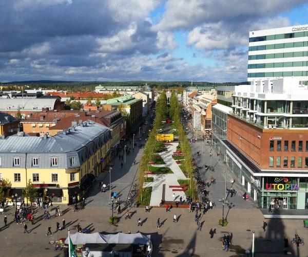 Hälsokontroll Umeå