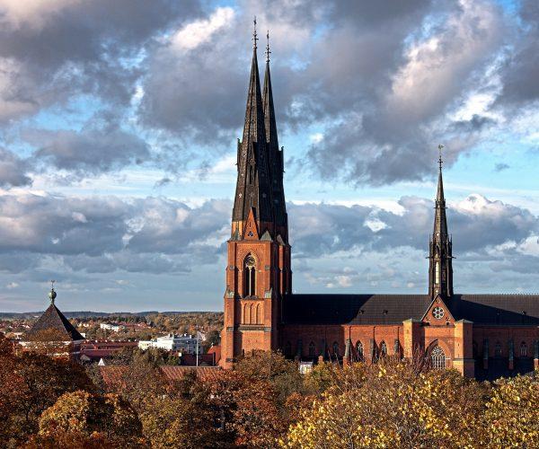 Jämför hälsokontroller i Uppsala